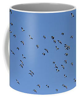 Flock Of Migratory Lapwing Birds In Clear Winter Sky Coffee Mug