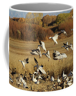 Flocking Together Coffee Mug