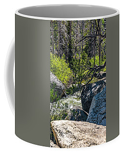 Flood Stage Coffee Mug by Nancy Marie Ricketts