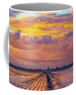 Flooded Field At Sunset Coffee Mug