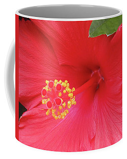 Floral Beauty 2 Coffee Mug
