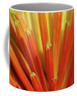 Floral Fireworks Coffee Mug
