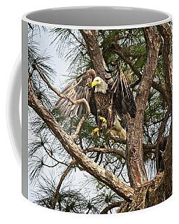 Florida Adult Bald Eagle  Coffee Mug