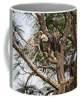 Florida Adult Bald Eagle  Coffee Mug