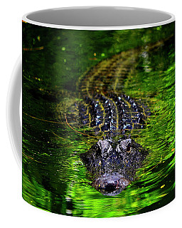 Florida Alligator Encounter Coffee Mug