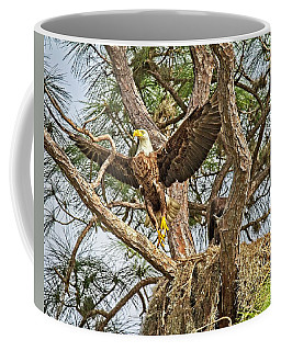 Florida Bald Eagle Coffee Mug