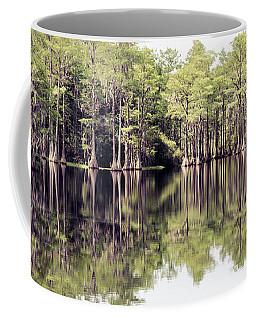 Florida Beauty 10 - Tallahassee Florida Coffee Mug
