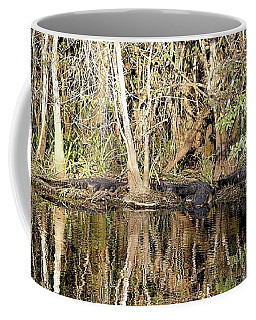 Florida Gators - Everglades Swamp Coffee Mug