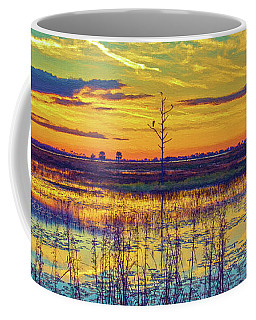 Florida Nature Paradise 2  Coffee Mug