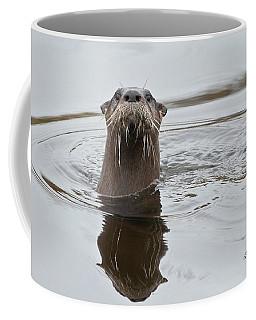 Florida Otter Coffee Mug