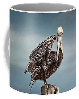 Florida Pelican Posing Coffee Mug