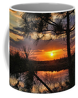 Coffee Mug featuring the photograph Florida Pine Sunset by HH Photography of Florida