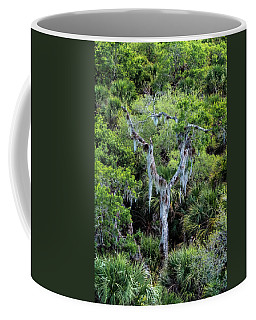 Florida Spanish Moss Coffee Mug