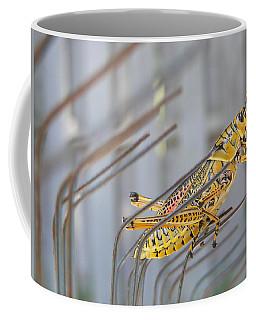 Florida Summer Coffee Mug