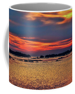 Coffee Mug featuring the photograph Florida West Coast  by Louis Ferreira