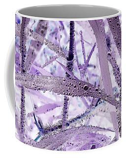 Flounder Coffee Mug