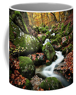 Coffee Mug featuring the photograph Flow by Jorge Maia