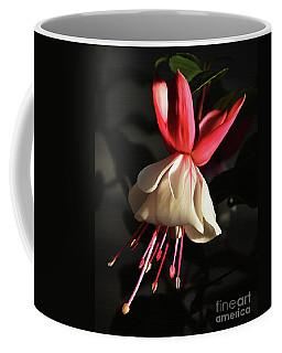 Flower 0021-a Coffee Mug by Gull G