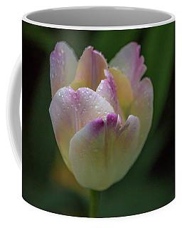 Flower 654853 Coffee Mug by Timothy Latta