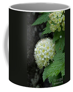 Coffee Mug featuring the photograph Flower Ball by Rod Wiens