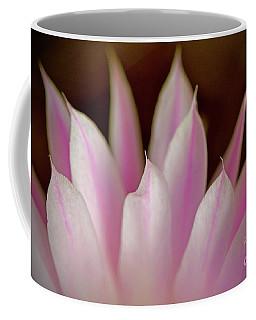 Flower Feathers Two Coffee Mug