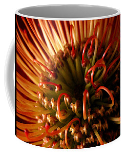 Coffee Mug featuring the photograph Flower Hawaiian Protea by Nancy Griswold