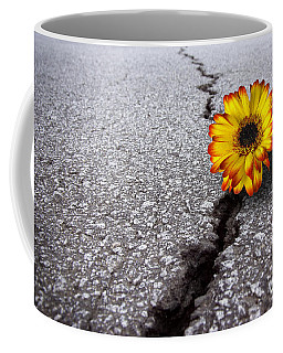 Flower In Asphalt Coffee Mug by Carlos Caetano