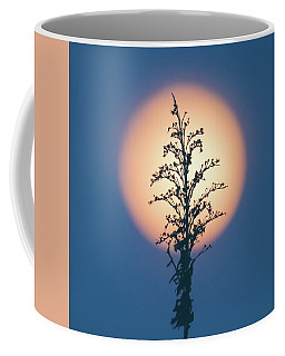 Flower Moon May 2017 Square Coffee Mug by Terry DeLuco