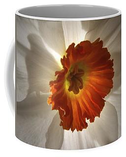 Flower Narcissus Coffee Mug