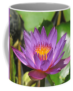 Flower Of The Lilly Coffee Mug