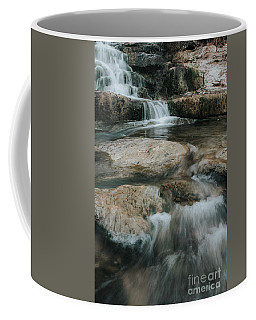 Coffee Mug featuring the photograph Flower Park by Iris Greenwell
