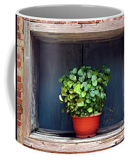 Flower Pot In A Window Coffee Mug