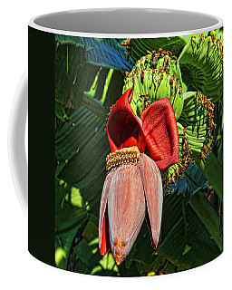 Coffee Mug featuring the photograph Flower Power by HH Photography of Florida