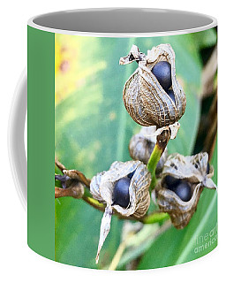 Flower Seed Pod Coffee Mug