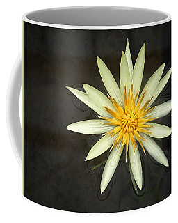 Flowerburst Coffee Mug by Joe Bonita