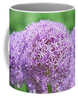 Flowering Allium Bulbs In Bloom Coffee Mug by DejaVu Designs