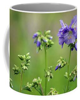 Flowering Cardamine Coffee Mug