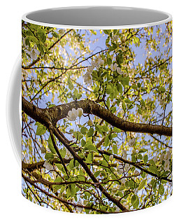 Flowering Crab Apple Coffee Mug