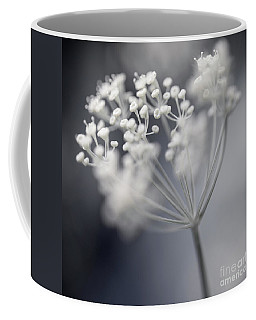 Coffee Mug featuring the photograph Flowering Dill Cluster by Elena Elisseeva