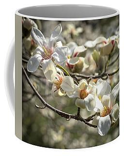Flowering Magnolia Coffee Mug by Cathy Donohoue