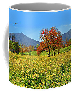 Flowering Meadow, Peaks Of Otter,  Virginia. Coffee Mug