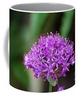 Flowering Purple Allium Flowers Coffee Mug by DejaVu Designs