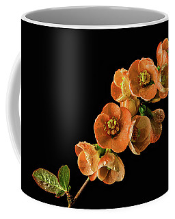 Coffee Mug featuring the photograph Flowering Quince Orange by Mary Jo Allen