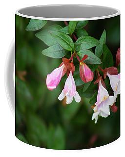Flowers 1 Coffee Mug by Ayasha Loya