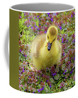 Flowers For Lunch Coffee Mug