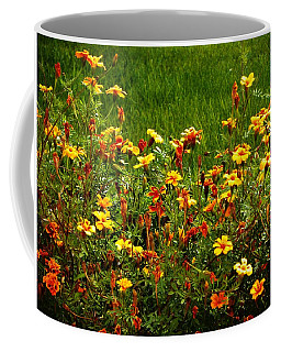 Flowers In The Fields Coffee Mug by Joseph Frank Baraba