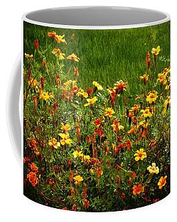 Flowers In The Fields Coffee Mug