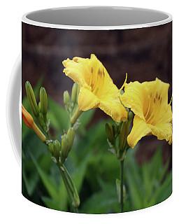 Flowers On Wall Coffee Mug