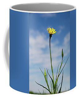 Flp-2 Coffee Mug