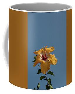 Flp-6 Coffee Mug